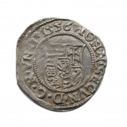 János Zsigmond denár N-P 1556 Nagybánya